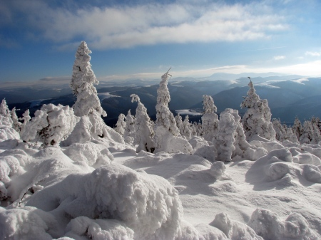 Winter-Carpathians-ukraine-22816548-1200-900